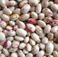 borlotti beans background