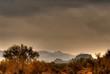 desert storm approaching 3