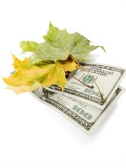 leaves and dollars
