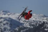 red jacket park skier poster