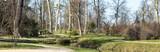 parc chateau versailles