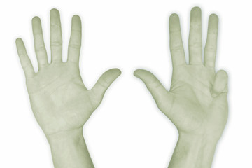 hand nr. 9 - in green