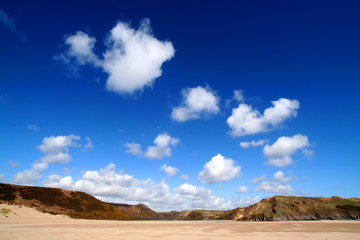 sunny beach landscape