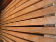 catasta_legno2