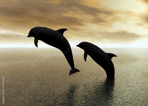 canvas print picture dolphins playing
