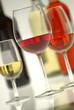 O Vinho e a Vinha