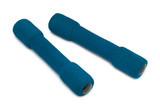 two blue dumbbells poster