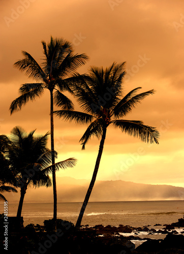 canvas print picture tropical sunset