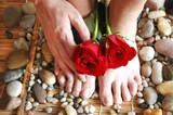 rose feet hand poster
