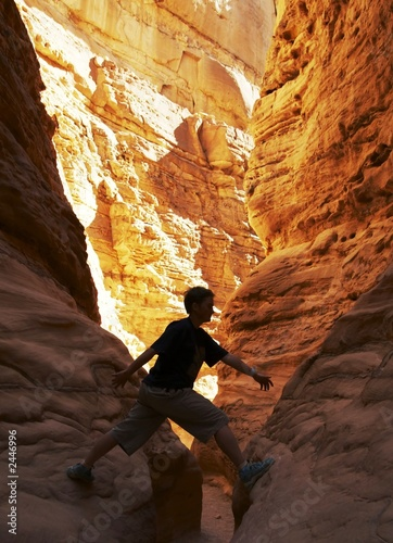 canvas print picture climber in canyon