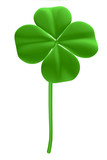 good luck - four leaf clover poster