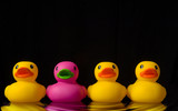 dare to be different - rubber ducks on black - with water ripple poster