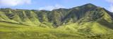hawaiian panorama poster