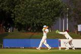 cricket player hitting ball poster