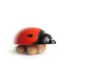 funny quick ladybird