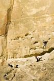 men rock climbing at smith rocks, oregon poster