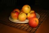 evening apples still life poster