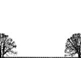 plain trees poster