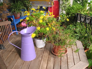 yellow flowers on the wood balcony table
