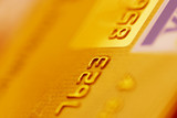 gold credit card poster