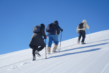 alpine expedition going towards the summit