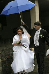 umbrella above the young wife