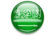 länderbutton aqua 2007: saudi-arabien