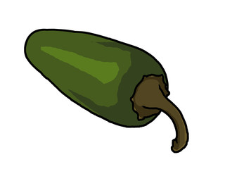 jalapeno pepper illustration