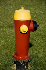 red and yellow hydrant on a suburban street