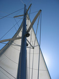 yacht sail and mast poster