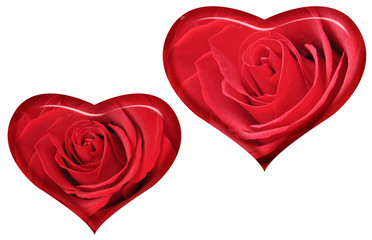 rose. heart