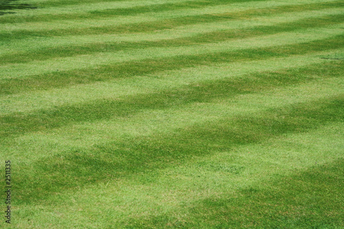 a view of a neatly mown lawn, 45 deg to the stripe