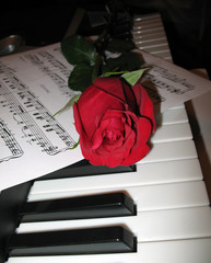 rose piano music collage