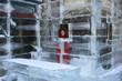 pretty woman in a ice hotel