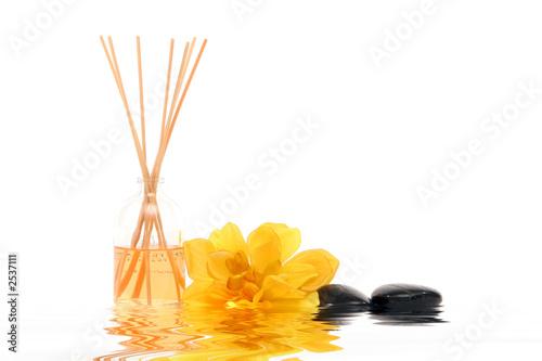 Leinwanddruck Bild flower, fragrance sticks and stones