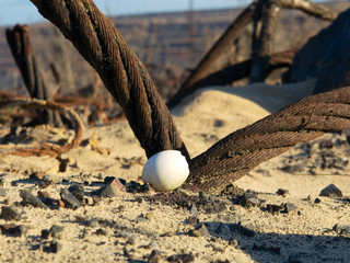 egg shell and thick wire rope in sand