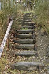 escalier de bois 1