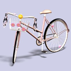 portrait of a bicycle / bike