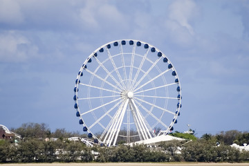 ferris wheel by the bay