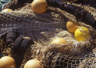 fishing net and floats