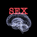 sex on the brain poster