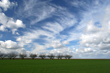 campagne et ciel
