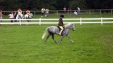child/athletic riding horse.equestrian. practicing poster
