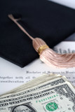 high cost of a diploma poster