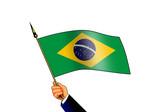 flag of brazil poster