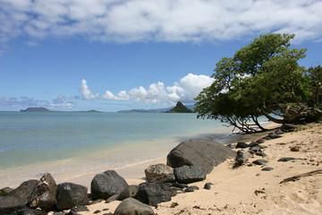 beach at northshore oahu