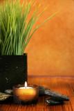 Fototapeta aromaterapia - bambus - Artykuły Wypoczynkowe