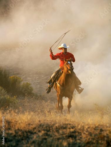Leinwandbilder,cowboy,ritt,reitend,pferd
