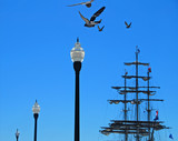 clipper ship in distance poster