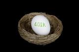 retirement 401k nest egg poster